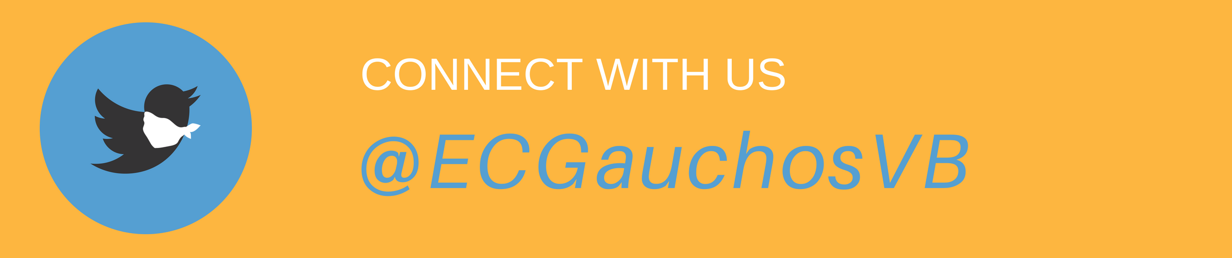 Connect with us @ECGauchosVB